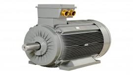Orta Gerilim Motorlar